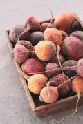 Fresh seasonal vegetables Stock Photos
