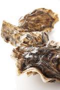 prepared fresh shellfish seafood - stock photo