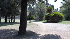 Man jogging in the park , villa doria pamphilj, rome Stock Footage