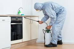 Full length of exterminator spraying pesticide on wooden cabinet in kitchen - stock photo