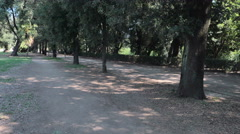 young man goes jogging in the middle of nature,  Villa Doria Pamphilj, rome - stock footage