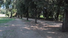 Man doing jogging in the Park while listening to music Stock Footage