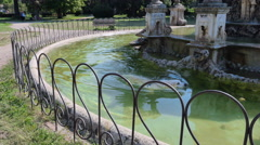 A labrador dog swimming in the water of a fountain, Villa Doria Pamphilj, rome Stock Footage