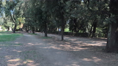 Man  joggers in the park Villa Doria Pamphilj rome Stock Footage