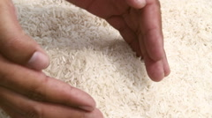 Rice grains in the hands. Stock Footage
