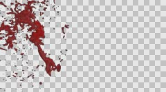 Hd Blood Burst Slow Motion (With Alpha) 175 Stock Footage