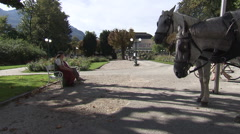 Horse-drawn carriage in Austrian park (Bad Ischl Kurpark) Stock Footage