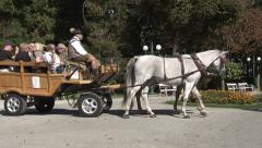 Horse-drawn carriage with people onboard moving (Bad Ischl Kurpark) Stock Footage