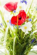 Beautiful wildflowers bunch Stock Photos