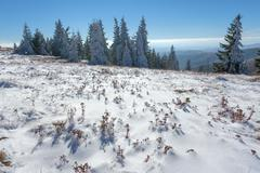 First snow in mountain area at sunny day Stock Photos