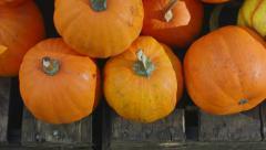 Pumpkins at market Stock Footage