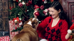 Lovely little bulldog and New Year's spheres at a New Year tree Stock Footage