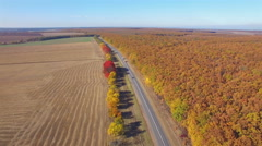 Aero Flight over the road between fields. Autumn colors. Stock Footage