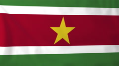 Flag of Suriname waving in the wind, seemless loop animation Stock Footage