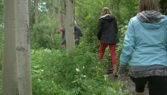 Group young adults hike through lush trees Stock Footage