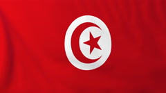 Flag of Tunisia waving in the wind, seemless loop animation - stock footage