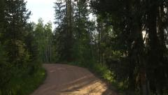 4k Driving through trees on dirt road in colorado perspective - stock footage