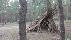Hut of logs in the pine forest Stock Footage