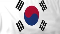 Flag of South Korea waving in the wind, seemless loop animation Stock Footage