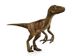 Velociraptor Stock Illustration