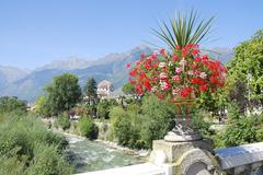 Stock Photo of Flowers in Meran