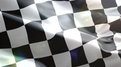 Race Flag. Formula 1, F1 - stock footage
