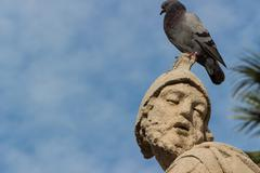 The baroque statue with pigeon - stock photo