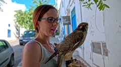Woman caressing saker falcon bird on hand Stock Footage