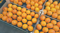 Persimmon in boxes in the supermarket Stock Footage