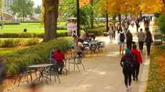 Students on Campus Under Canopy of Fall Trees Stock Footage