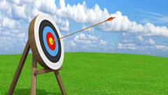 Arrow from an archer accurately hitting center bullseye of target, 3D animation Arkistovideo