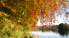 Autumn Landscape and River Dee in Aberdeen, Scotland UK Stock Footage