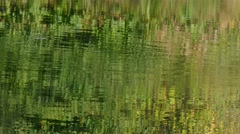 Reflections in the water Stock Footage