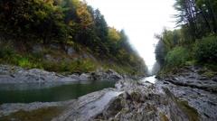 Rainy autumn day - stock footage