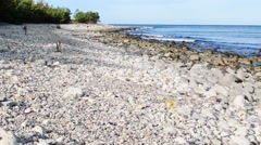 Limestone beach with pebbles Stock Footage