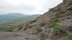 Crimea mountain Demerdzhi mountains trees Stock Footage