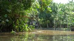 Wetlands in Belem do Para, Brazil Stock Footage