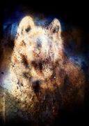 Wolf painting, color abstract effect on background Stock Illustration