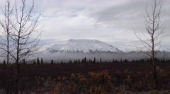 Alaska Scenery at Denali National Park in Autumn - stock footage