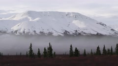 Driving Shot of Denali National Park Stock Footage