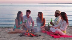 Cheerful young people drink beverages on the lake. Stock Footage