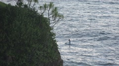 Paddle boarder as sea off Hawaii Stock Footage