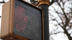 Traffic signal for pedestrian in New York Stock Footage