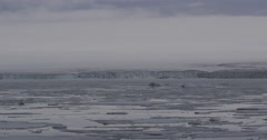 Sea Ice Rides the Swells Below and Icecap Stock Footage
