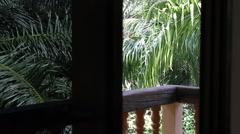 Jungle views from the windows Stock Footage