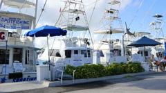 Bahia Mar fishing fleet Stock Footage