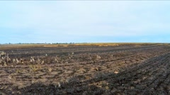 Burnt Agricultural Field In Ukraine Stock Footage