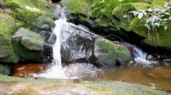 Small water fall with mossy rock Stock Footage