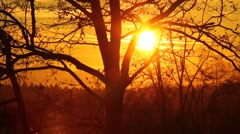 Sunset at the end of the day on a winter falling night Stock Footage