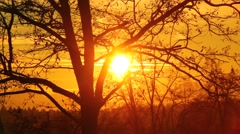 Sunset at the end of the day - stock footage